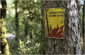 La sécheresse entraîne une interdiction des feux en forêt